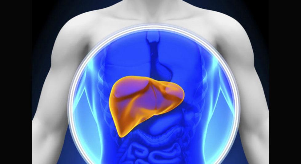 Síntomas de que tu hígado no está sano | Mariela TV