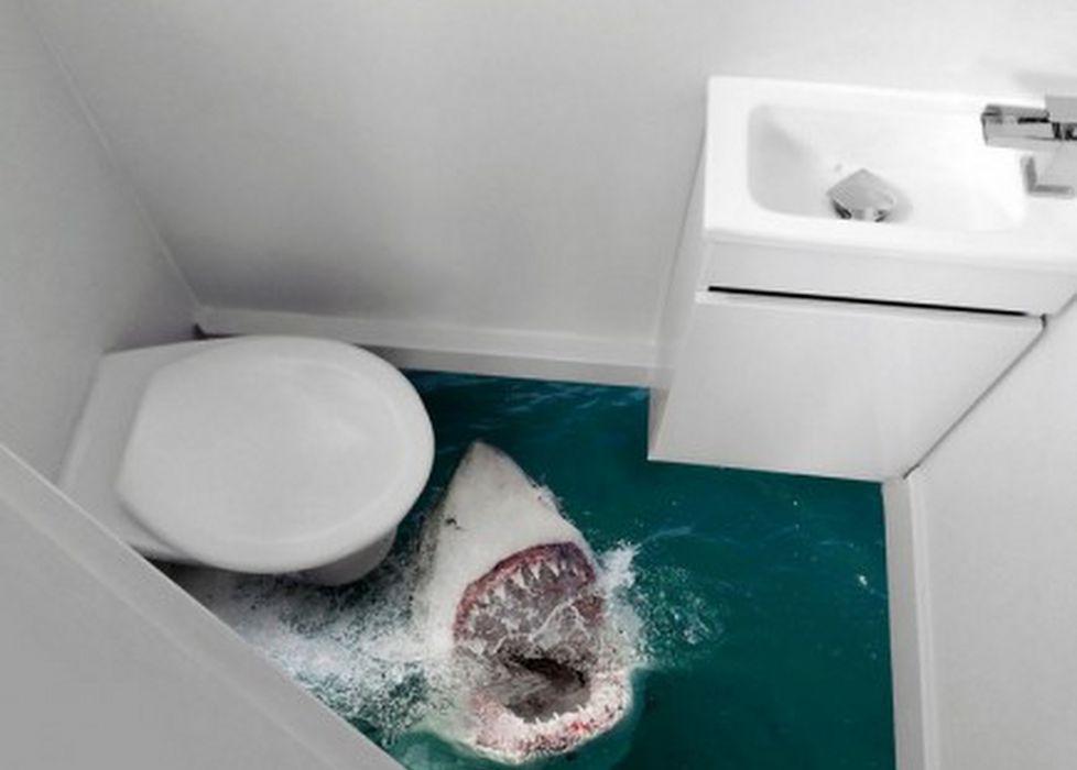Los baños más fascinantes del mundo
