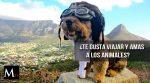 Si te apasiona viajar y amas a los animales esto es para ti