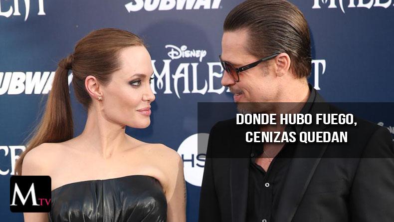 ¿Por qué han detenido el proceso de divorcio Angelina y Brad Pitt?