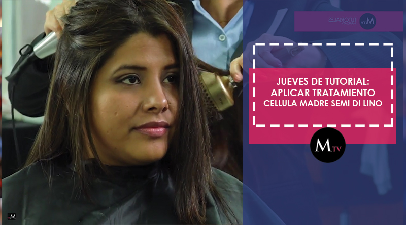 Tratamiento Cellula Madre de Semi Di Lino de ALFAPARF – #JuevesDeTutorial