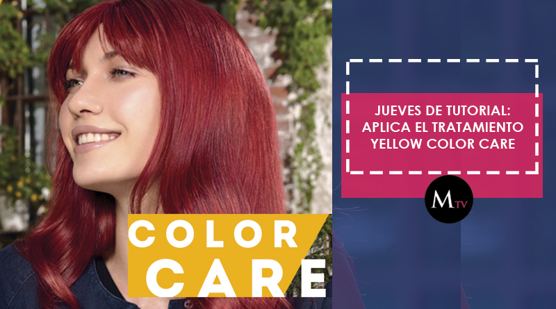 Tratamiento YELLOW COLOR CARE de Alfaparf – TutorialesMarielaTV