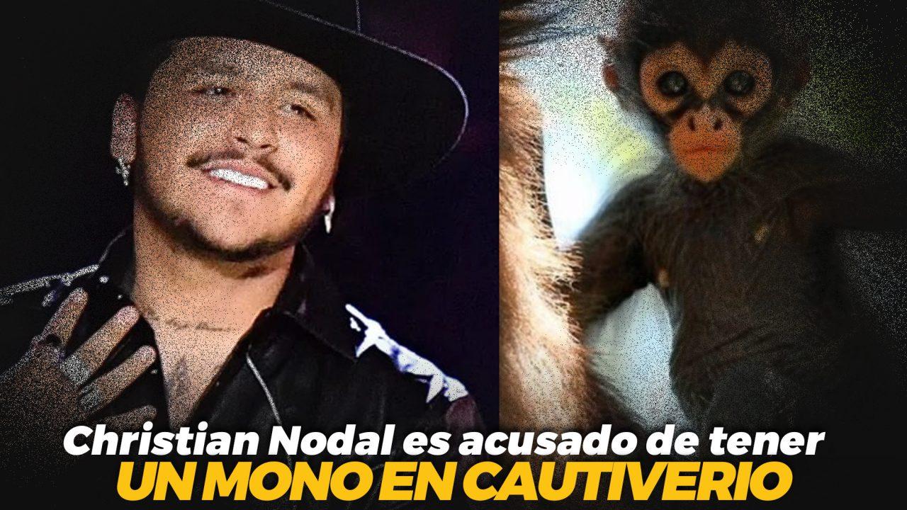Christian Nodal es acusado de tener un mono en cautiverio